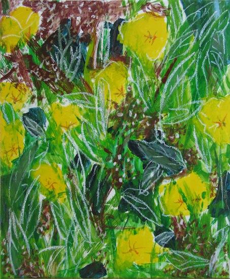 Nature - Flore - Fleurs - Onagre - Plantes - Couleurs - Jaunes - Verts