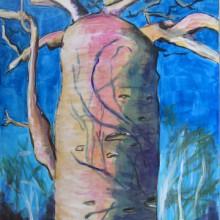Baobab rose