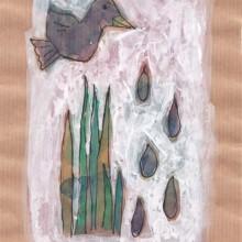 Oiseau pluie